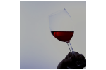 fase visual cata de vino